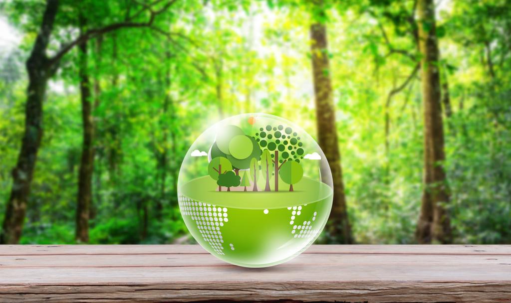 Composición gráfica sobre economía sostenible