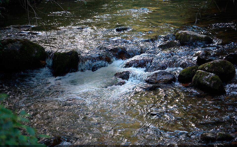 rio con agua contaminada, se ven las piedras que lo atraviesan