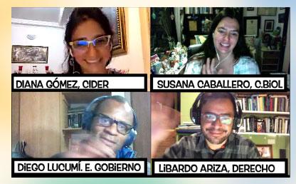 Imagen de cuatro personas en una videoconferencia.