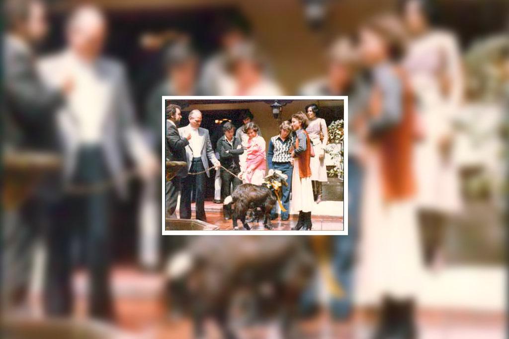 Una cabra, similar al Séneca original, era traída al Campus y sus alrededores para fechas especiales.
