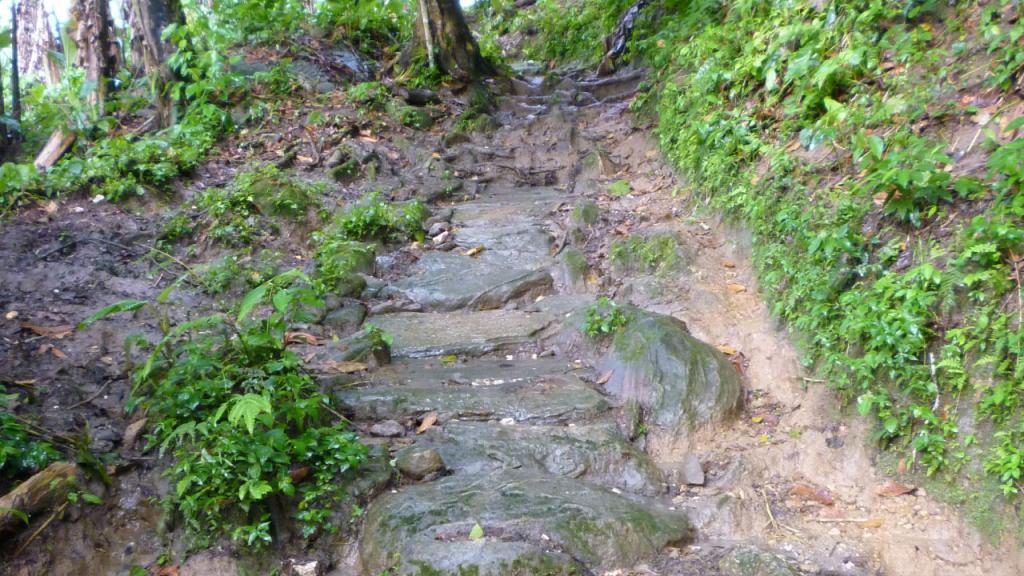 Imagen de un tramo del camino que atraviesa el asentamiento prehispánico Koskunguena.