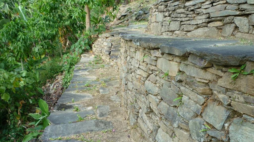Imagen de sistema de muros de contención escalonados en el asentamiento prehispánico El Congo, Sierra Nevada de Santa Marta.