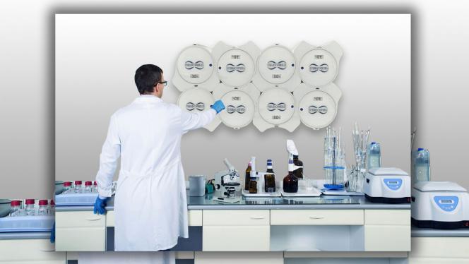 Sistema de refrigeración a través de una bacteria gana Biodesign Challenge 2019