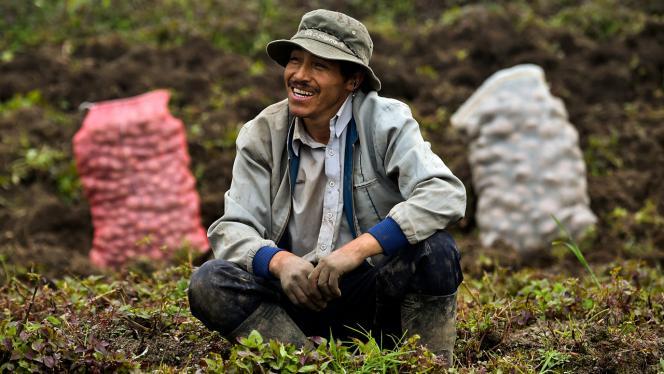 Imagen de una persona sonriendo en un cultivo