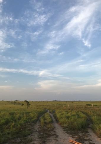 Imagen de un paisaje con una carretera
