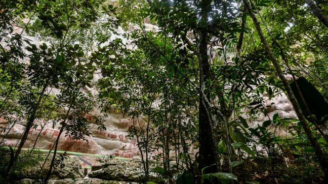 Foto de la Serranía la lindosa Guaviare