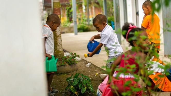 Niño regando unas plantas