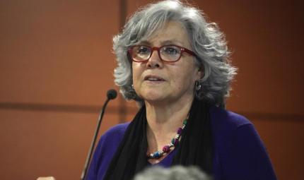 Margarita Serje, directora del Departamento de Antropología.