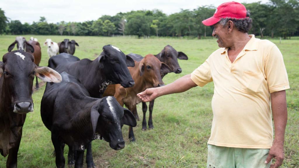 Cantos de vaquería: ¿Celebrarlos o salvarlos? | Uniandes