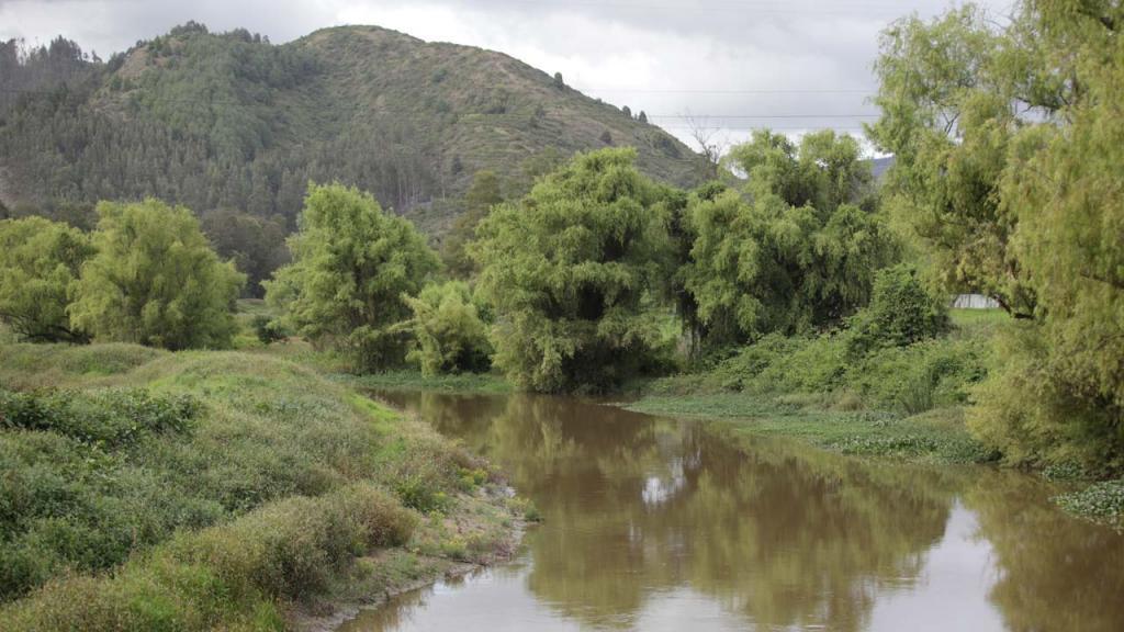 Fotografía del río Bogotá.